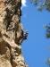 climbing-in-corsica-2